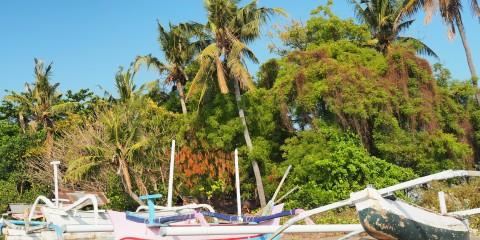 Lovina Beach 8. – 12.10.2015