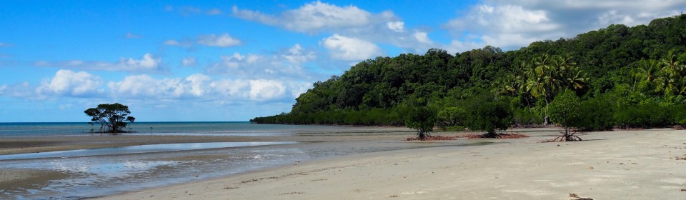 Cape Tribulation 1.  –  2.  Juni 2016
